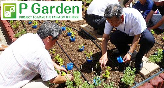 環境活動:P-ガーデン